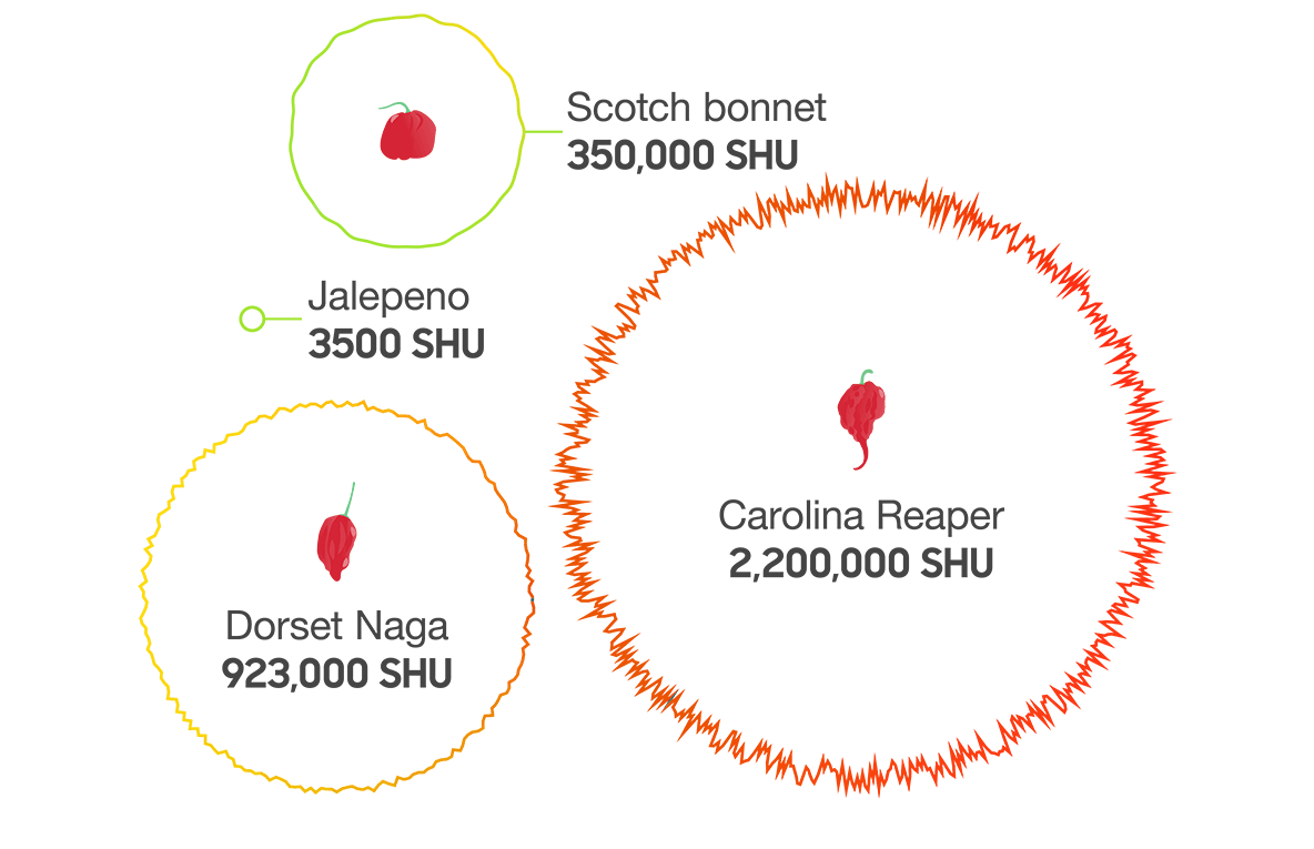Data visualisation of the Scoville units of four chillies