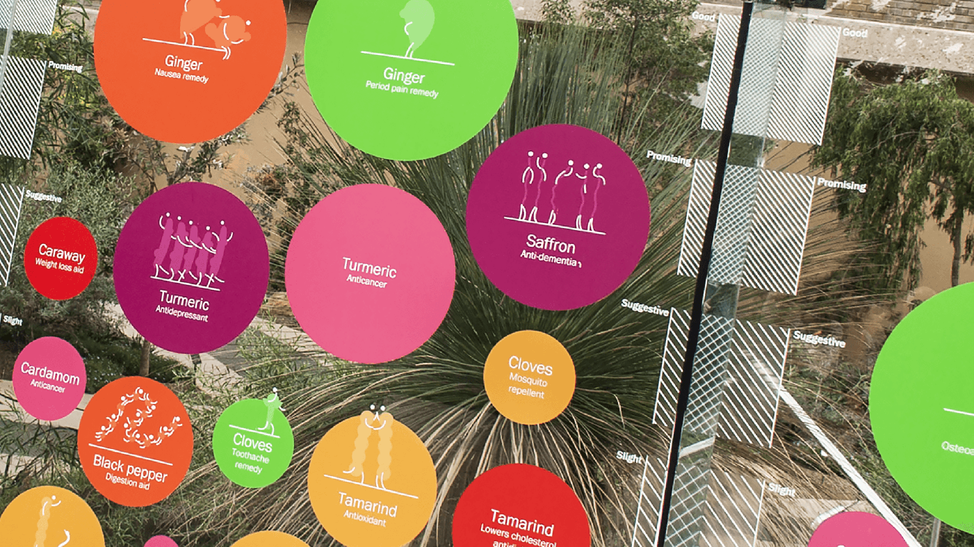 Photo of close-up of Spice of Life data visualization