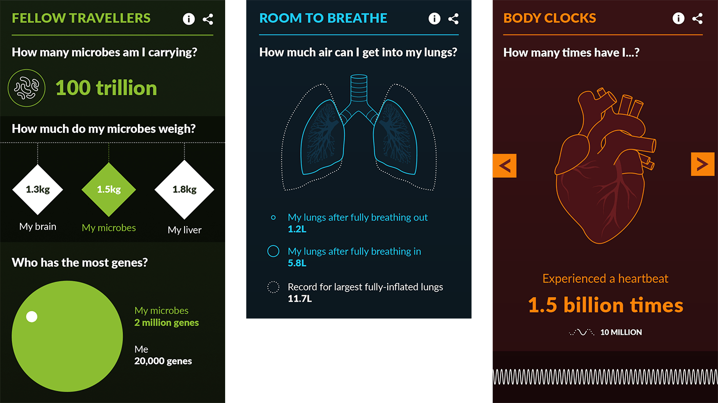Three infographics about human organs.