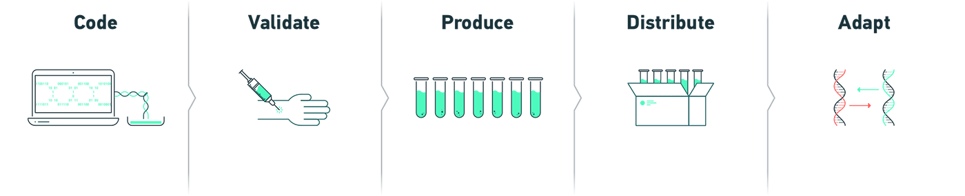Illustration of vaccine production